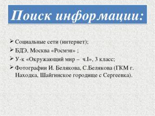 Поиск информации: Социальные сети (интернет); БДЭ, Москва «Росмэн» ; У-к «Окр