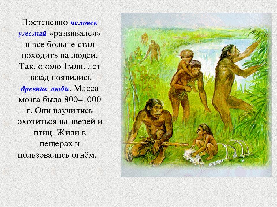 Постепенно человек умелый «развивался» и все больше стал походить на людей. Т...