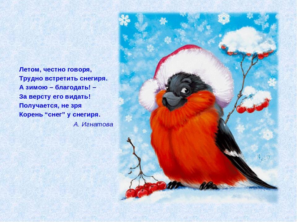 утро с снегирями открытки сожалению, сегодня