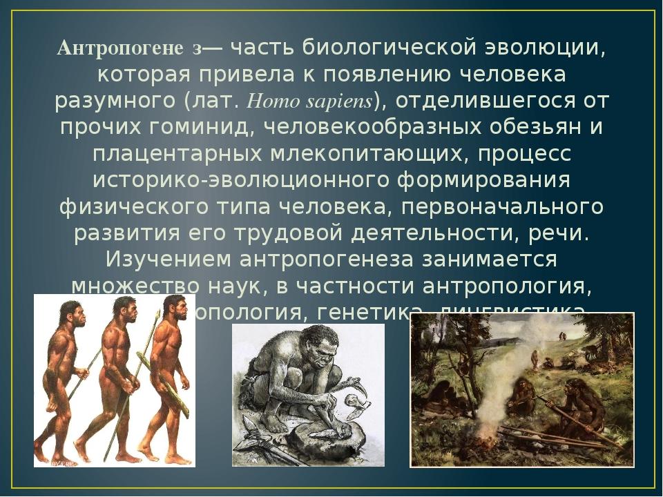 картинка на тему происхождение человека петушиной головой