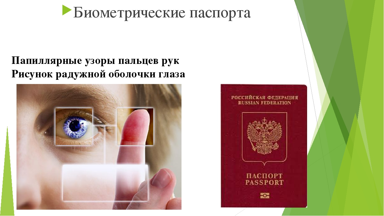 Паспорта папиллярных узоров