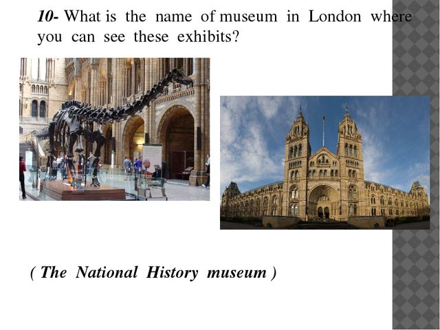 10- What is the name of museum in London where you can see these exhibits?...