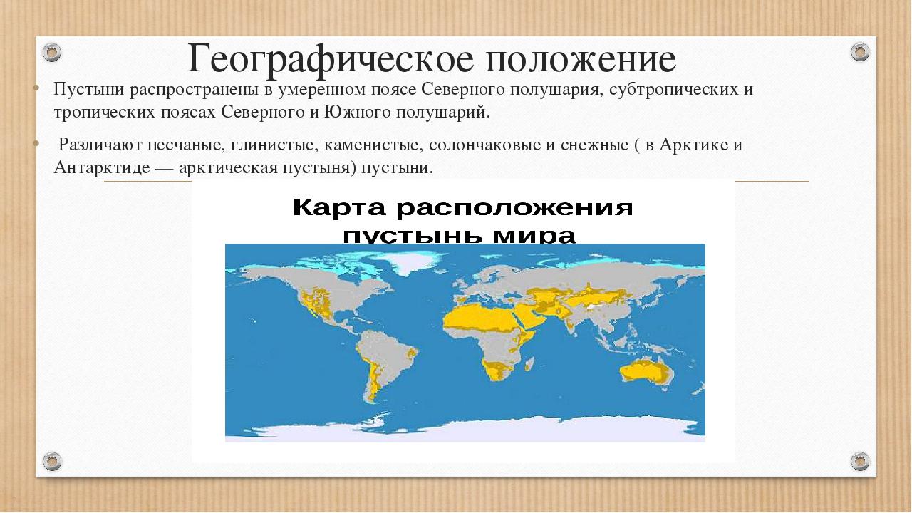 Леса на территории россии картинки современные