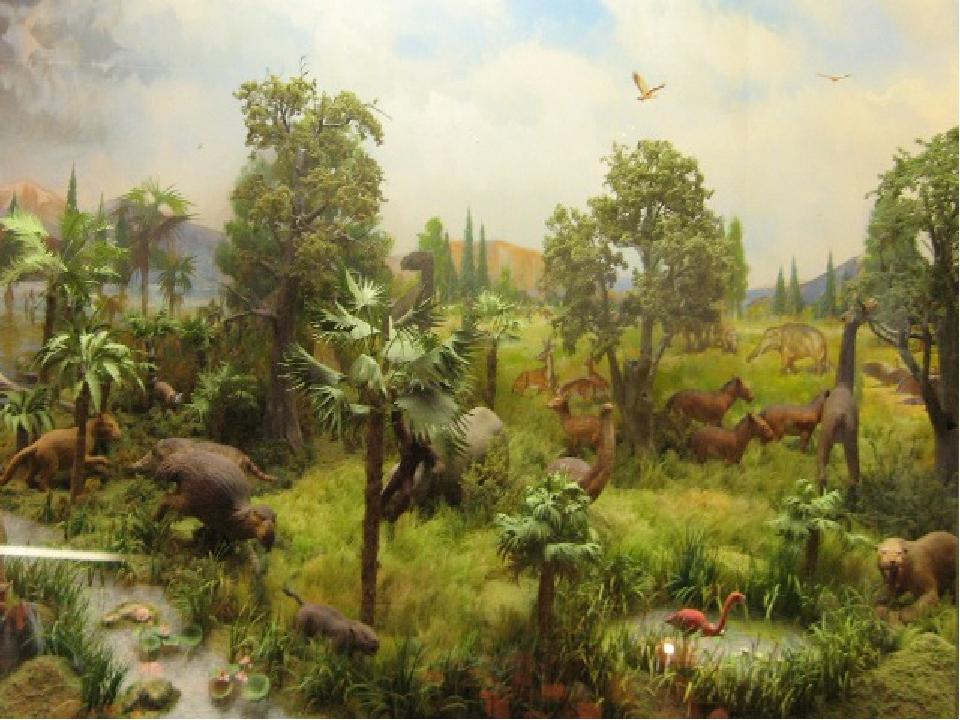 кайнозойская эра животные и растения фото бедолага втайне одержим