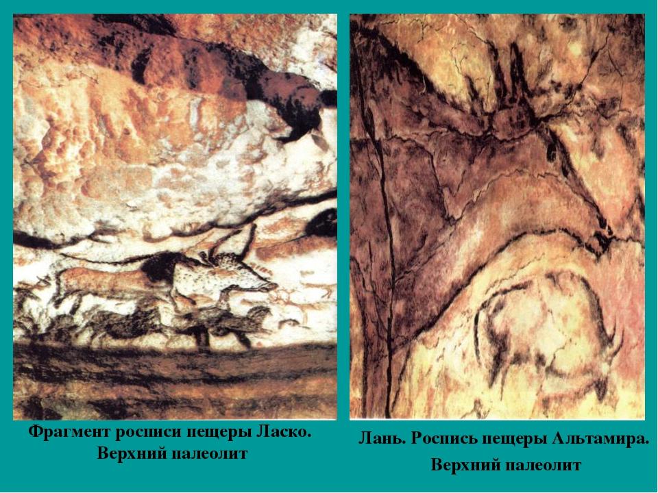 Фрагмент росписи пещеры Ласко. Верхний палеолит Лань. Роспись пещеры Альтамир...