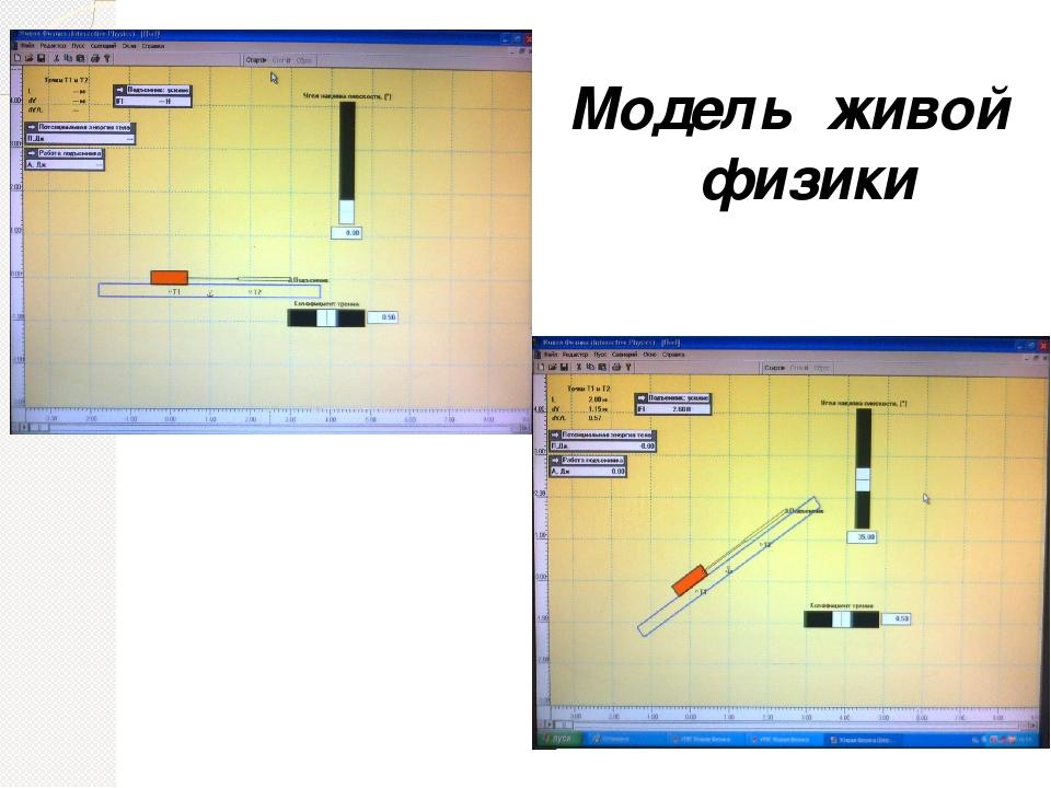 Модель живой физики