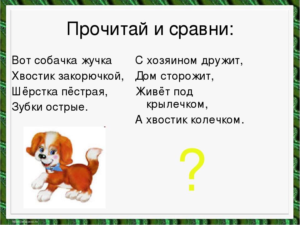 Прочитай и сравни: Вот собачка жучка Хвостик закорючкой, Шёрстка пёстрая, Зуб...