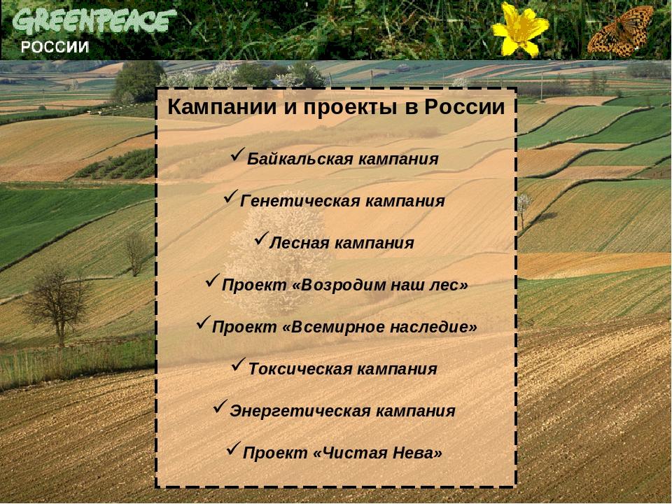 Кампании и проекты в России Байкальская кампания Генетическая кампания Лесная...