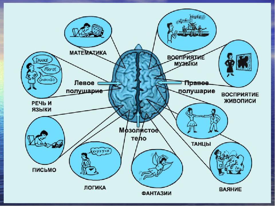 Ленинградская в чем заключается нейромедиаторное кодирование мастурбирующих женщин