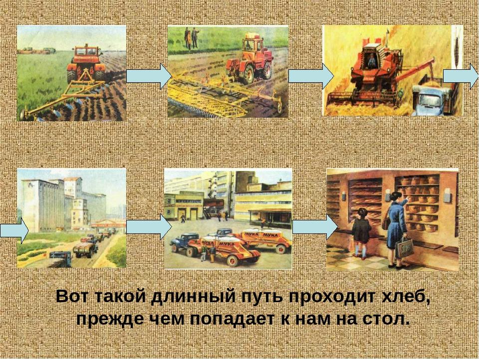 Картинки на тему откуда хлеб пришел для детского сада