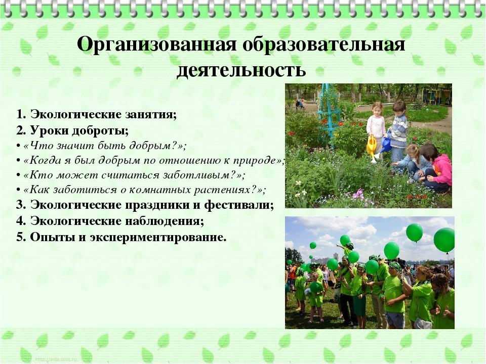 Организованная образовательная деятельность 1.Экологические занятия; 2. Урок...