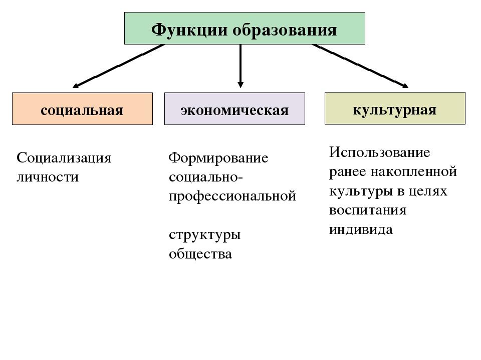 культурная Функции образования Формирование социально-профессиональной струк...