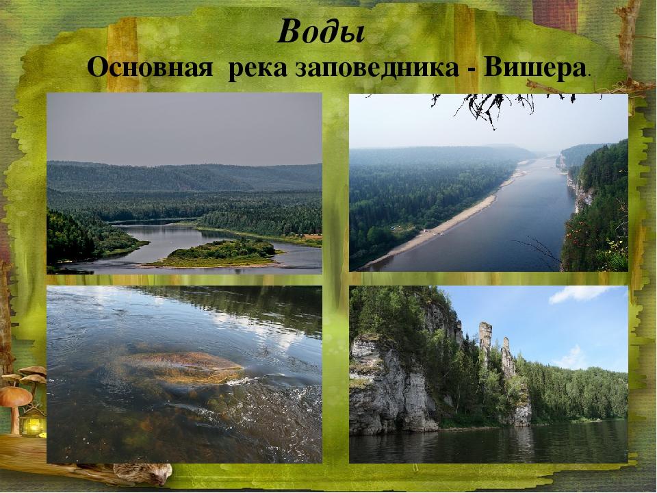 Воды Основная река заповедника - Вишера.