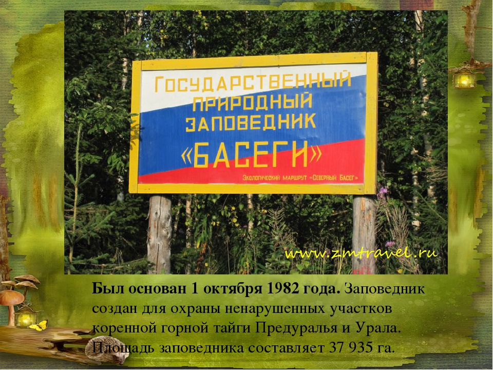 Был основан 1 октября 1982 года. Заповедник создан для охраны ненарушенных уч...