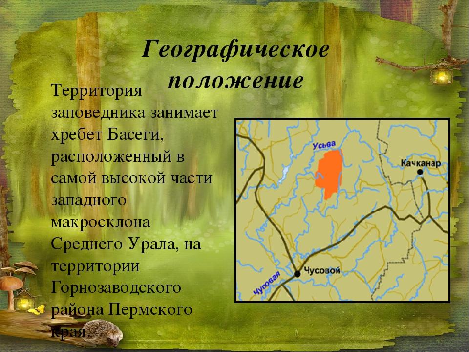 Территория заповедника занимает хребет Басеги, расположенный в самой высокой...