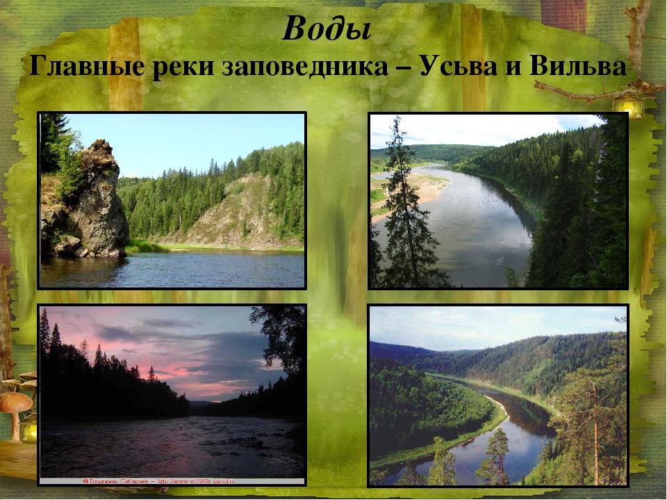 Воды Главные реки заповедника – Усьва и Вильва