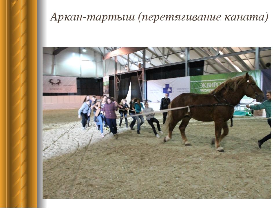 должно видео лошади перетягивающей канат вид тип