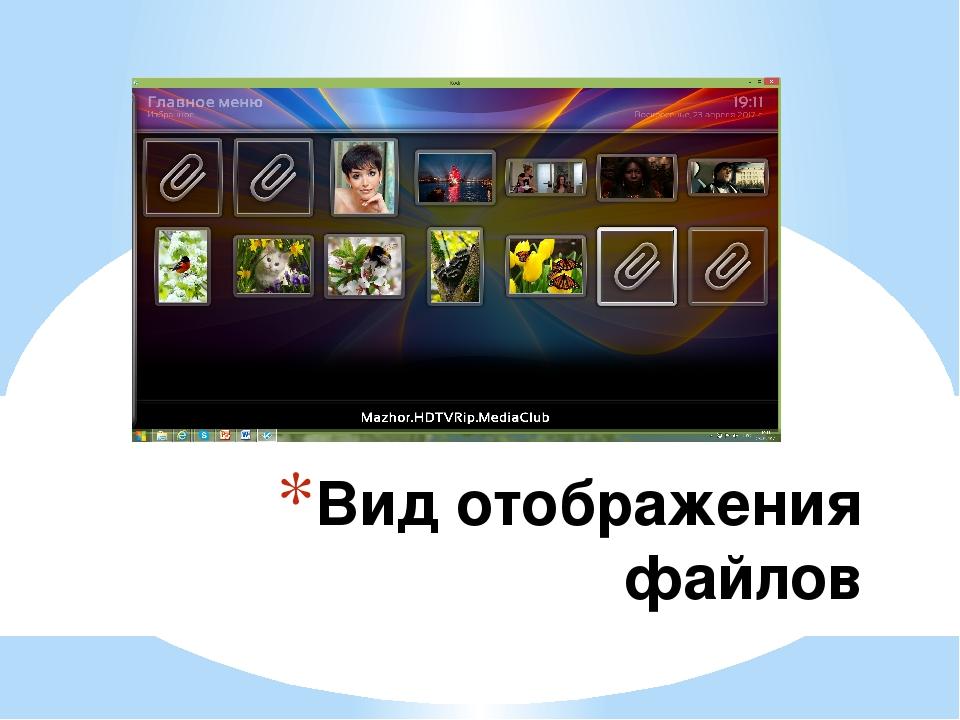 Вид отображения файлов