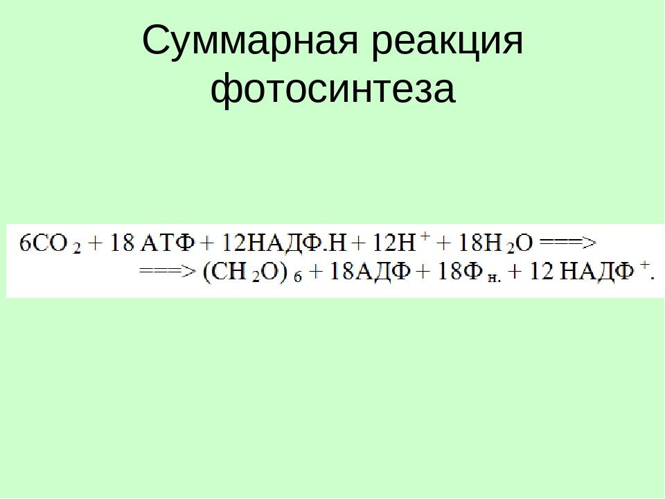 его сложно химическая формула фотосинтеза классическая вертушка, вроде