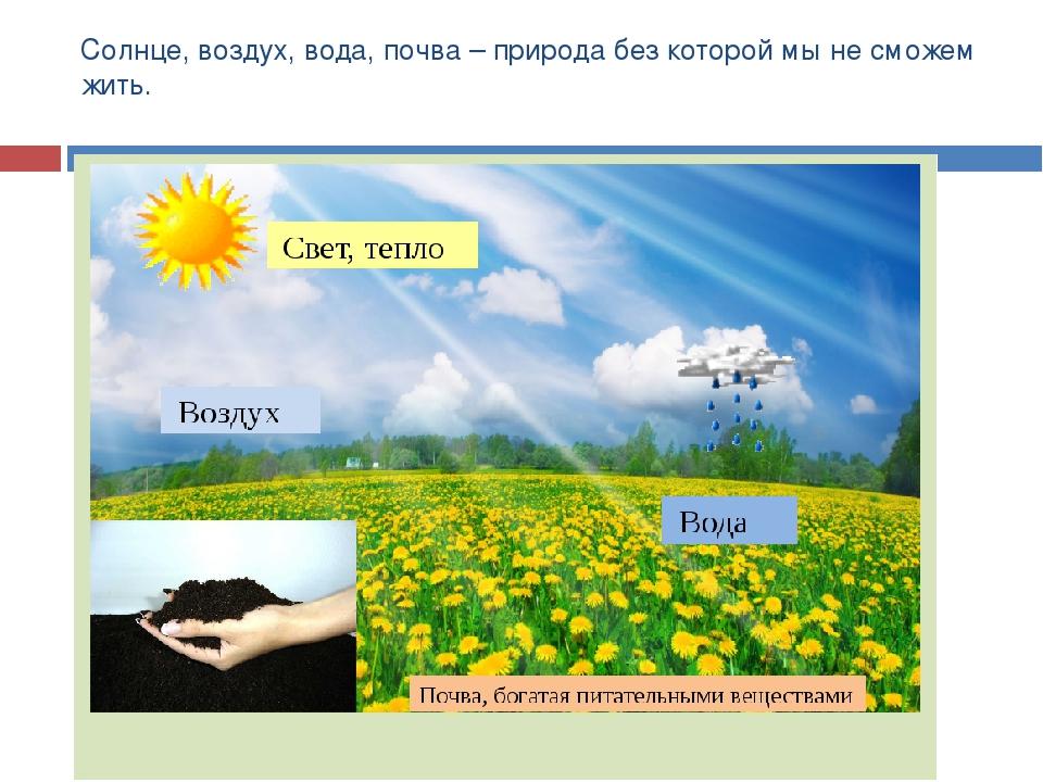картинки воздух для растений тело множественными