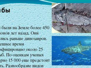 Рыбы были на Земле более 450 миллионов лет назад. Они появились раньше диноз