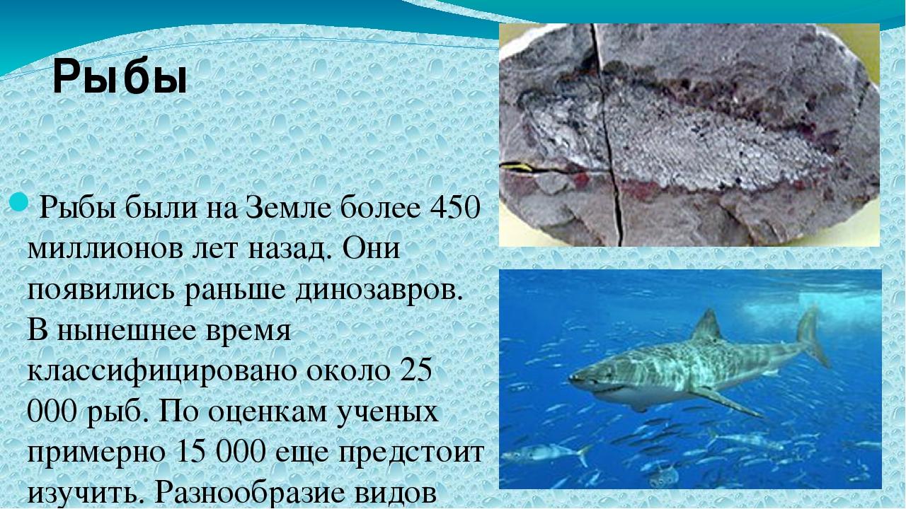 Рыбы были на Земле более 450 миллионов лет назад. Они появились раньше диноз...