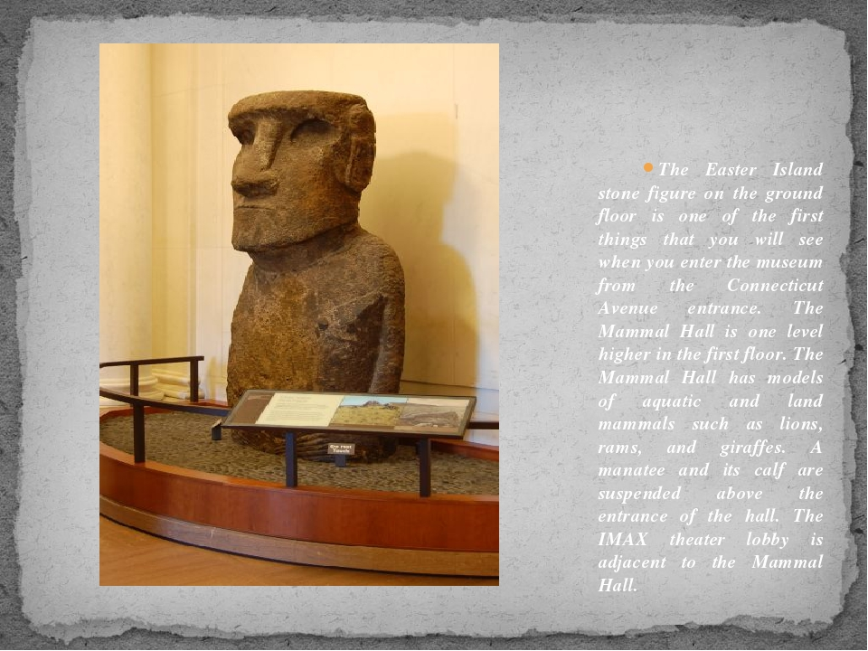 The Easter Island stone figure on the ground floor is one of the first things...
