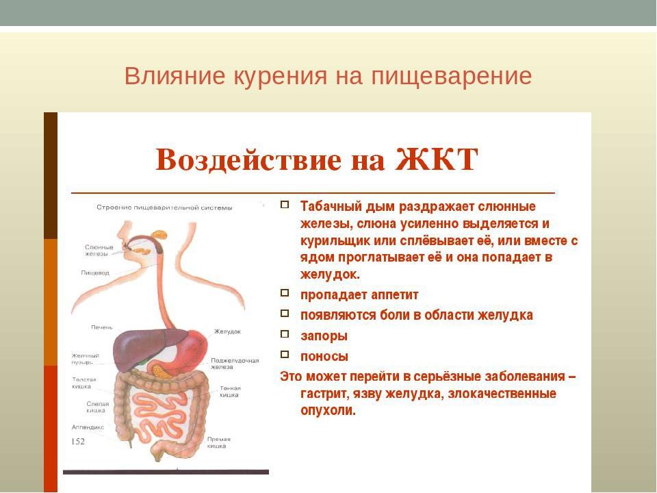 Простатит влияние на жкт хранический простатита