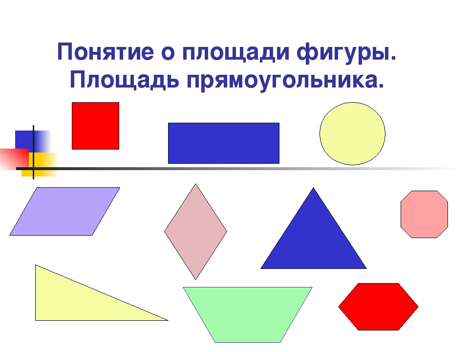 Понятие о площади фигуры. Площадь прямоугольника.