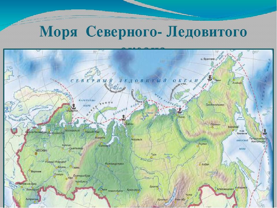 Моря Северного- Ледовитого океана