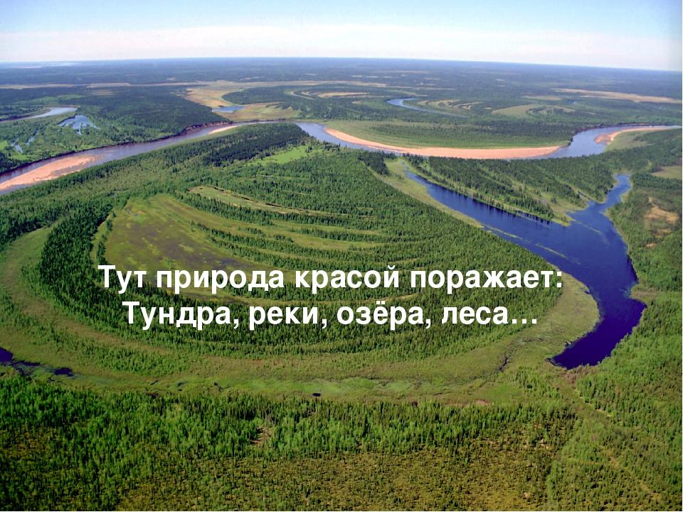 Тут природа красой поражает: Тундра, реки, озёра, леса…