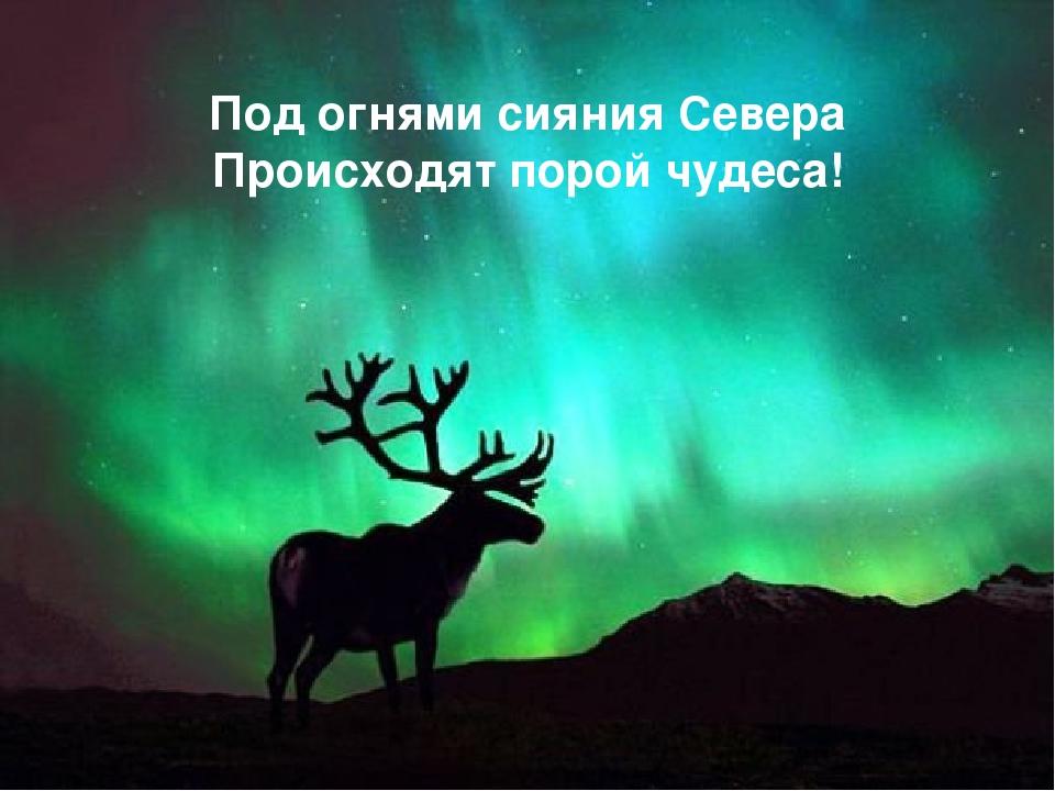 Под огнями сияния Севера Происходят порой чудеса!