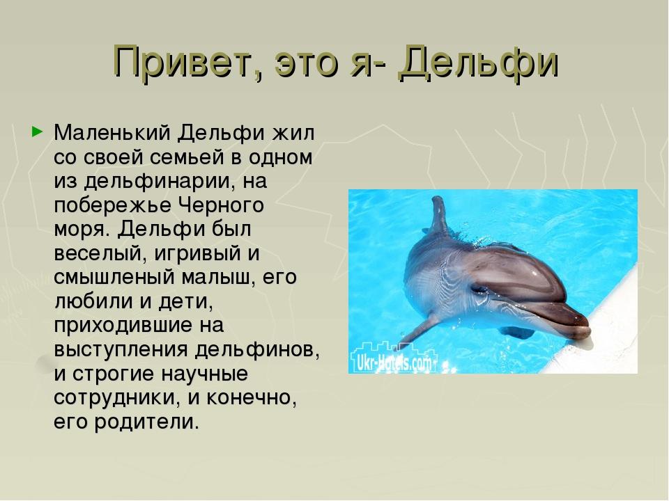 Привет, это я- Дельфи Маленький Дельфи жил со своей семьей в одном из дельфин...