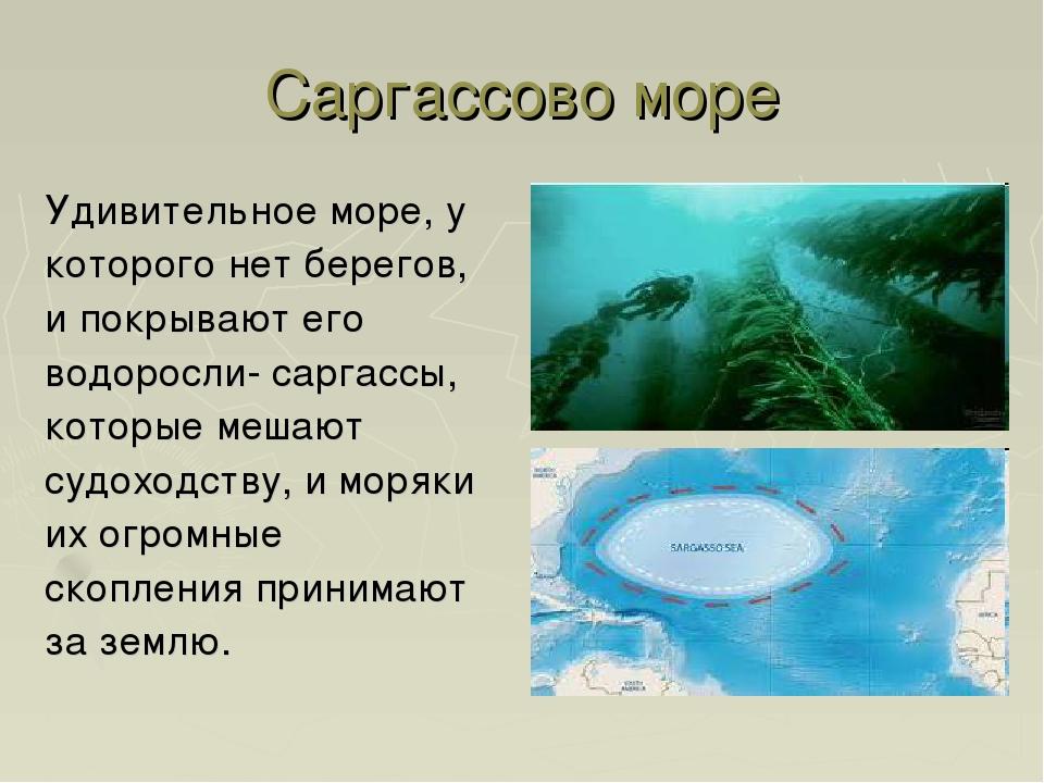Саргассово море Удивительное море, у которого нет берегов, и покрывают его во...
