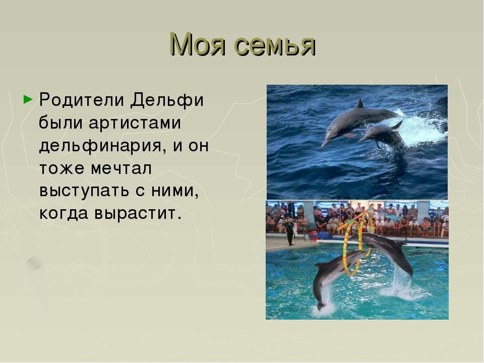 Моя семья Родители Дельфи были артистами дельфинария, и он тоже мечтал выступ...