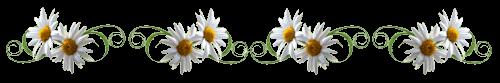 hello_html_m3e87612e.png