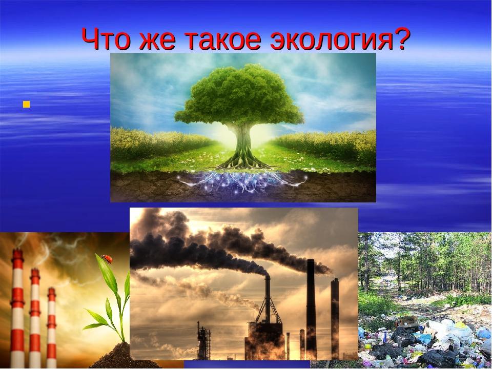 Что же такое экология?