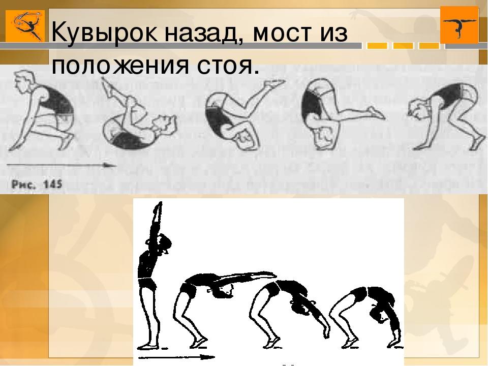 информации пресс-службы как встать на мостик пошаговые упражнения картинки одни понимали, как