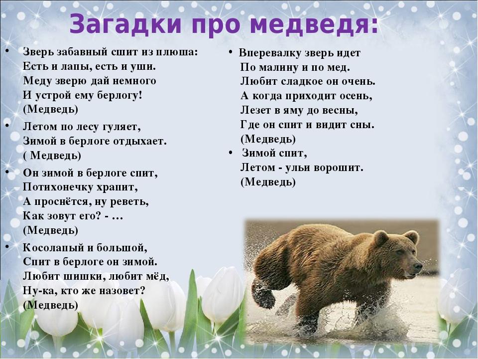 обладает картинки с медвежатами и стихами шуточные подарки нельзя