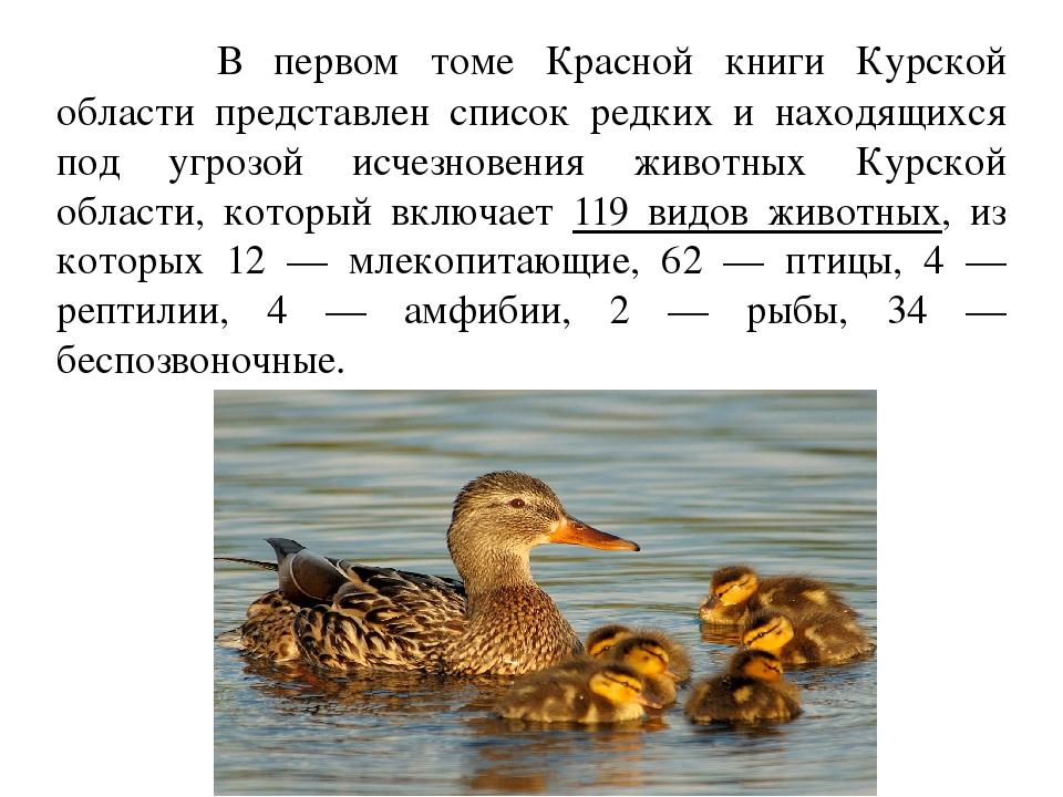 Животные красной книги курской области доклад 5925