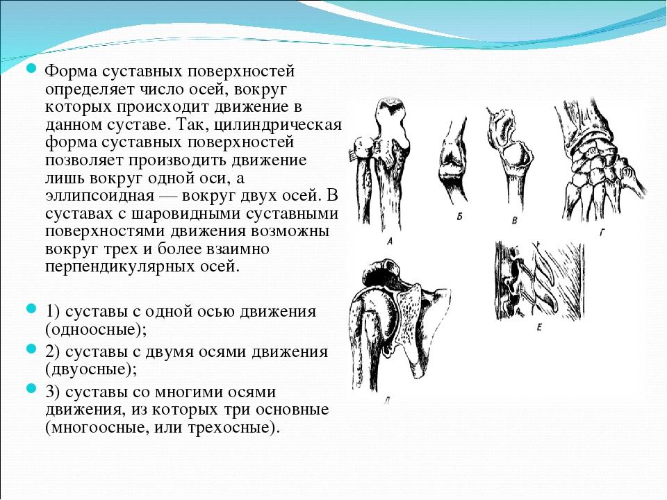Форма суставных поверхностей комбинированных суставов жжение в суставах ног