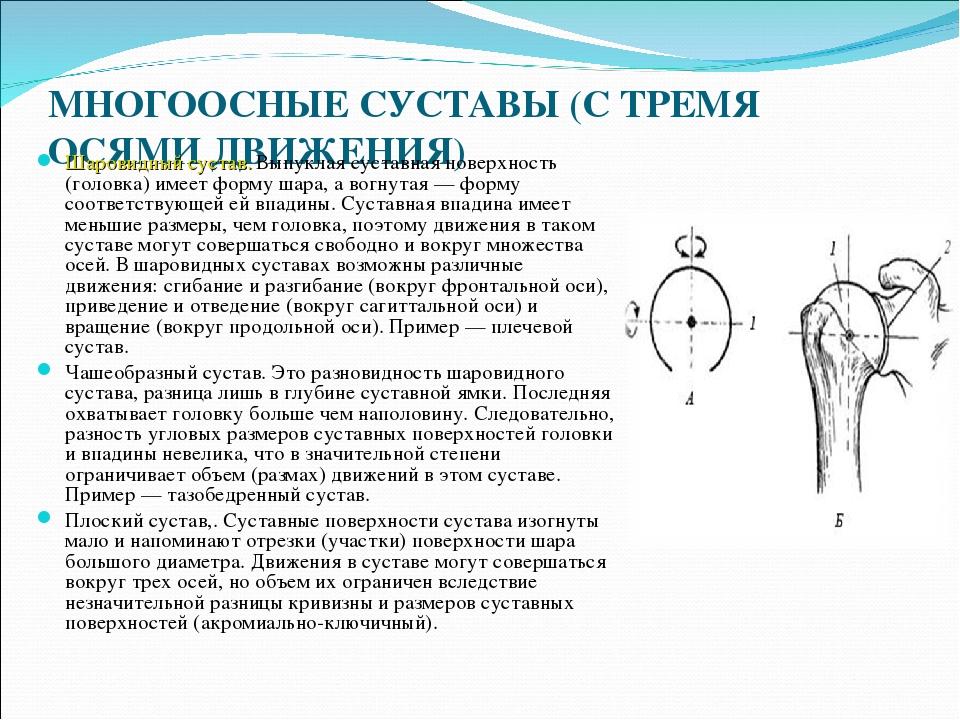 Многоосные суставы послеоперационный период эндопротезирование тазобедренного сустава