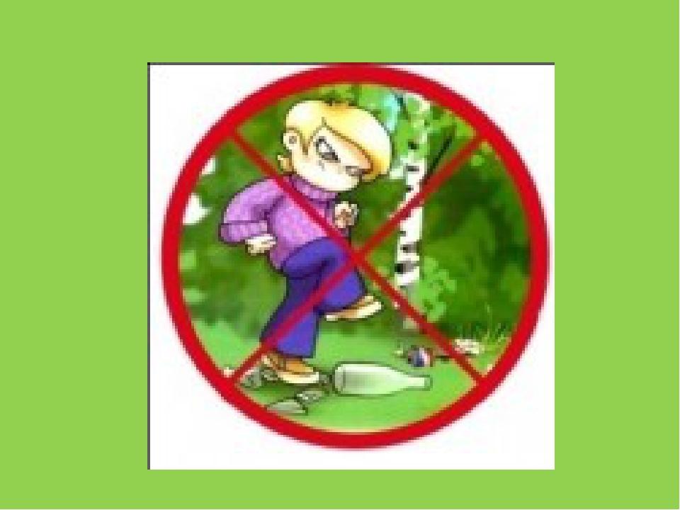 Знаки по правилам поведения в лесу картинки