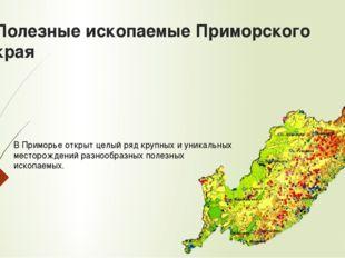 Полезные ископаемые Приморского края В Приморье открыт целый ряд крупных и ун