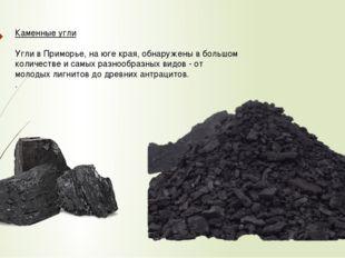 Каменные угли Угли в Приморье, на юге края, обнаружены в большом количестве и