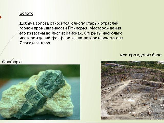 Золото Добыча золота относится к числу старых отраслей горной промышленности...