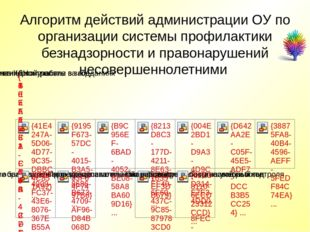 Алгоритм действий администрации ОУ по организации системы профилактики безнад