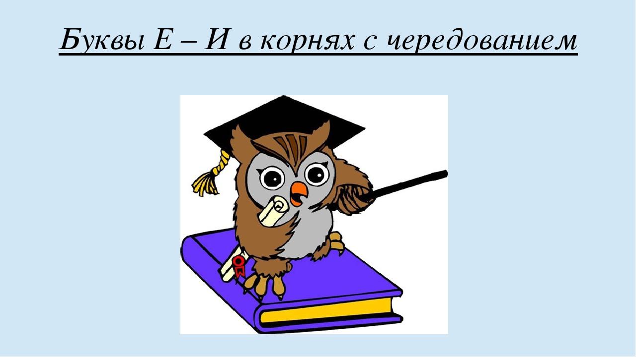 Буквы Е – И в корнях с чередованием