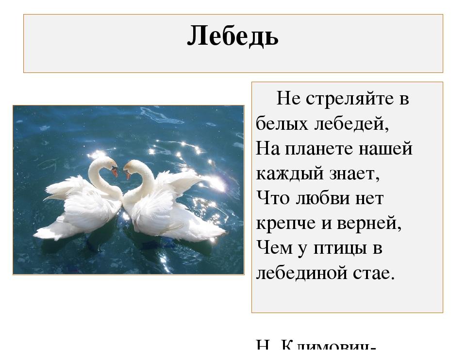 Лебедь Не стреляйте в белых лебедей, На планете нашей каждый знает, Что любви...