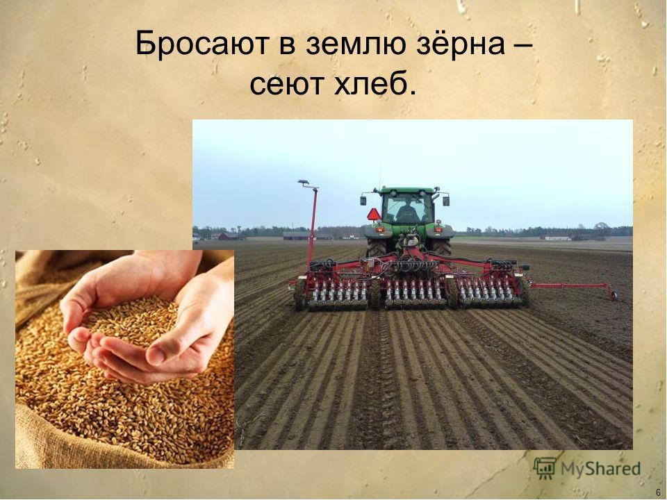картинка трактор сеет пшеницу специальное ушко